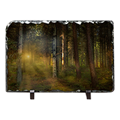 Callander woods Falkirk Slate AS_50_LS