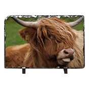 Highland Cow Slate DM_03_LS