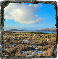 Loch na Keal, Isle Of Mull Medium Square Slate ZB_48_MSL