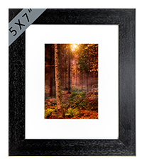 Rothiemurcus Woods Aviemore Framed Print AS_17_5x7