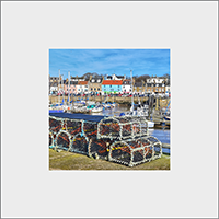 Anstruther Mounted Print FMC_49_MM