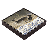Fallow Deer  Framed Tile ZB_24_FT