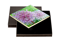 Flower Boxed Tile DM_10_BXTILE