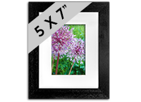 Flower framed Print DM_10_5x7