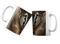 Greater Spotted Wood Pecker FB_07_MUG