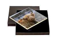 Highland Cow Boxed Tiles  ZB_45_BXTILE