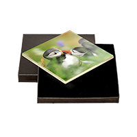 Puffin Boxed Tile  ZB_07_BXTILE