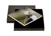 Puffin Boxed Tile ZB_59_BXTILE