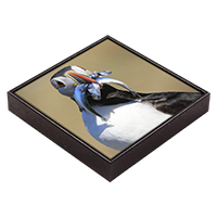 Puffin Framed Tile  ZB_11_FT