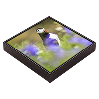 Puffin Framed Tile  ZB_14_FT