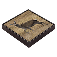 Red Deer Hind Framed Tile ZB_32_FT