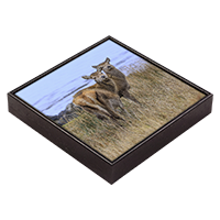 Red Deer Hind Framed Tile ZB_34_FT