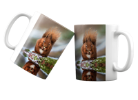 Red Squirrel FB_04_MUG